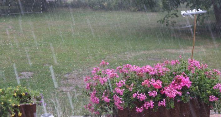Жара берет передышку: какую погоду обещают эстонские синоптики