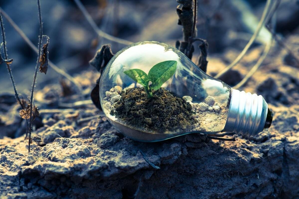 Четыре совета о том, как инвестировать в зелёное будущее