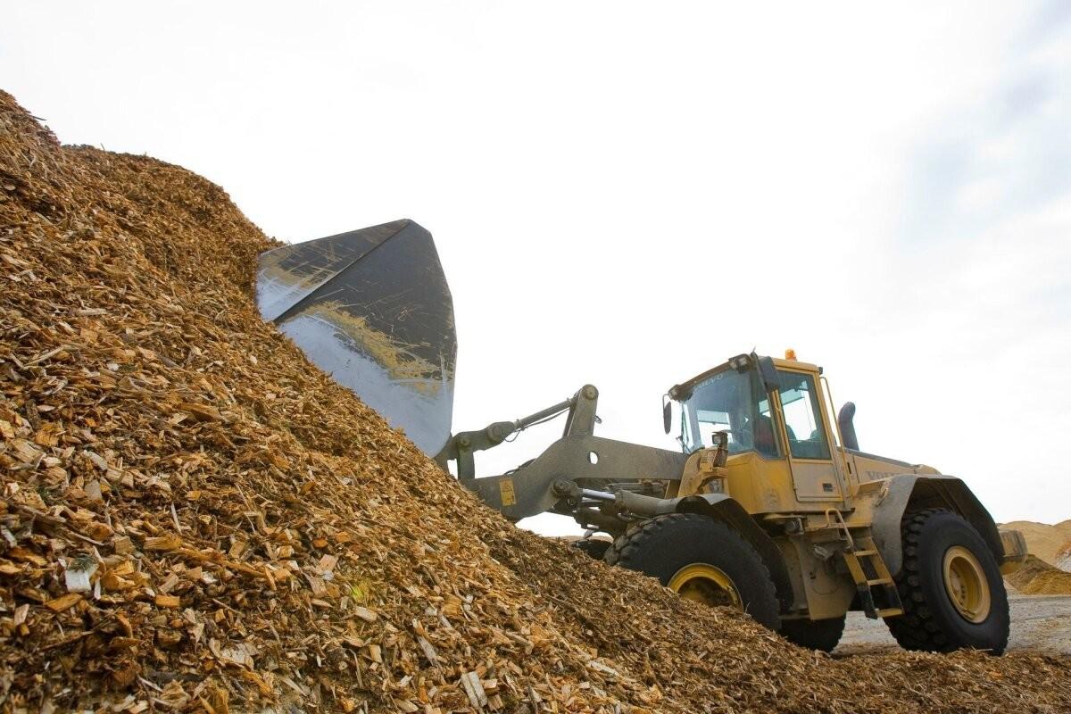 Стоимость биомассы в отопительный период во многом будет зависеть от Беларуси