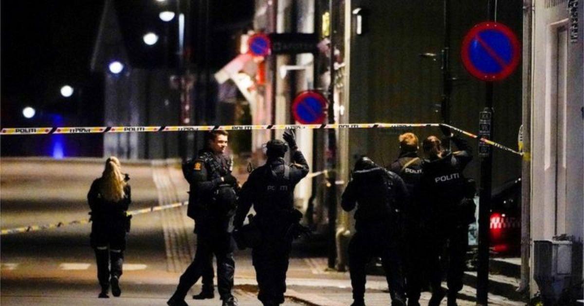 В Норвегии мужчина, вооруженный арбалетом, застрелил пятерых человек