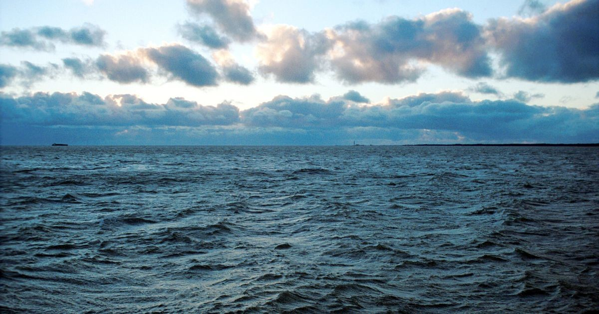 Сильный ветер поднимет в Балтийском море волны до 3,5 метров