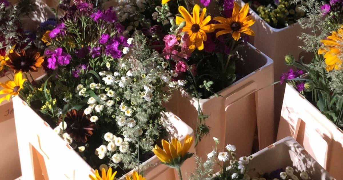 Ноу-хау известного эстонского флориста: местные цветы на гребне моды