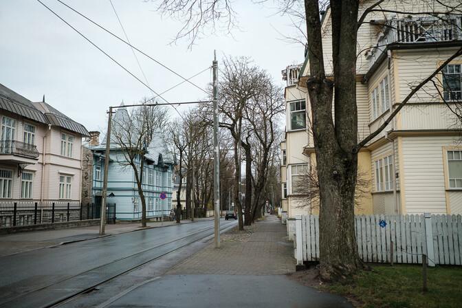 Ремонт улицы Поска в Таллинне завершен, но новые деревья еще не посажены