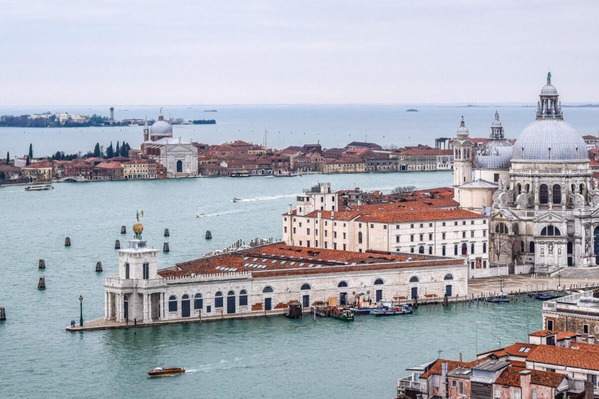 ВИДЕО | Дельфины вернулись в Венецию