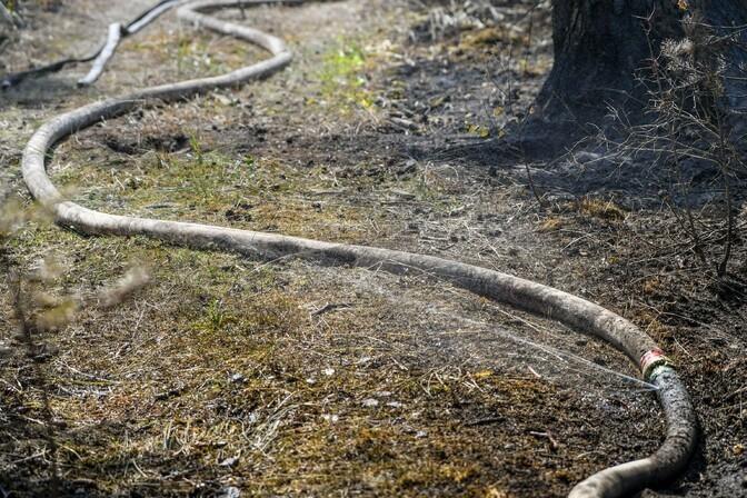 В волости Ляэне-Нигула из-за удара молнии горят лес и болото