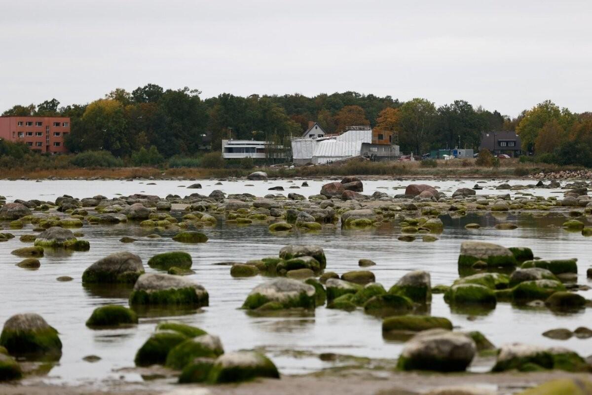 ГАЛЕРЕЯ | А где вода-то? Пляж под Таллинном остался без моря
