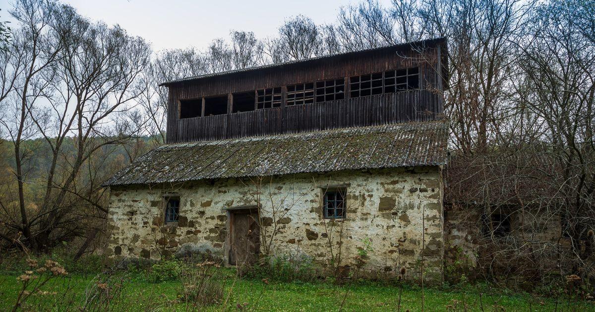 Для обеспечения безопасности необходима помощь жителей Эстонии