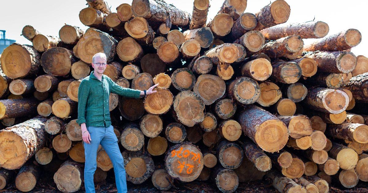 Одно из крупнейших деревообрабатывающих предприятий Эстонии выходит на белорусский рынок