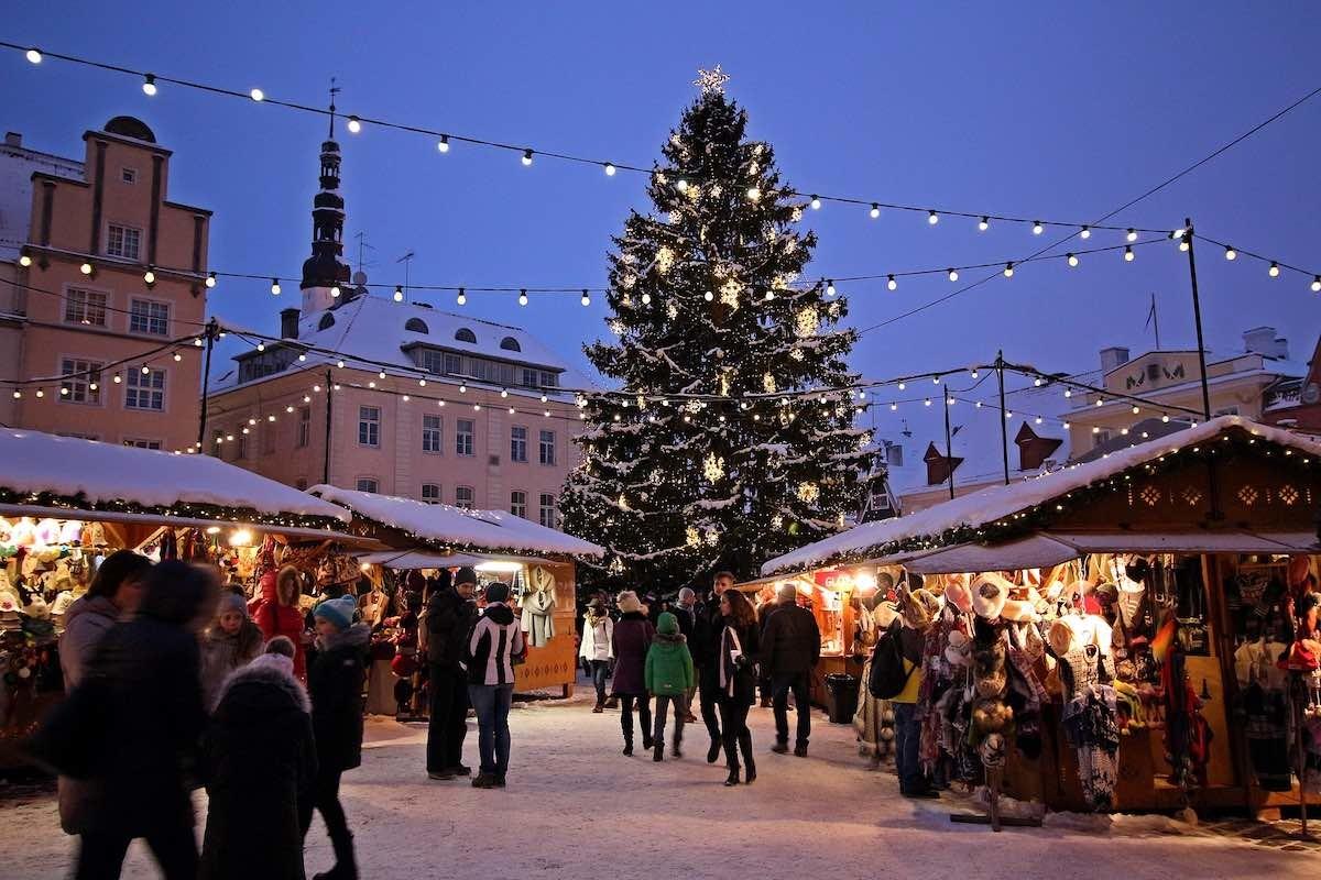Рождественская ёлка на Ратушной площади появится 19 ноября