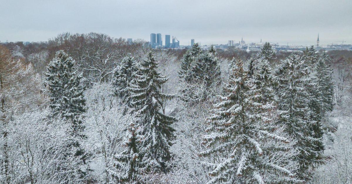 Завтра синоптики обещают снежный морозный день