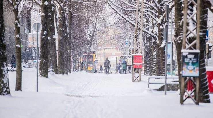 В Таллинне уборка снега и борьба с гололедом ведутся круглосуточно