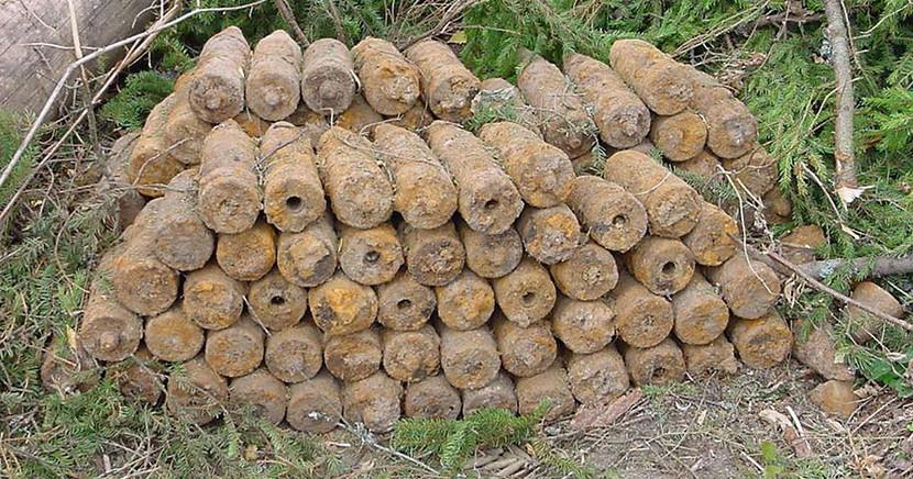 Саперы обезвредили обнаруженные в Нарва-Йыэсуу 34 взрывных устройства