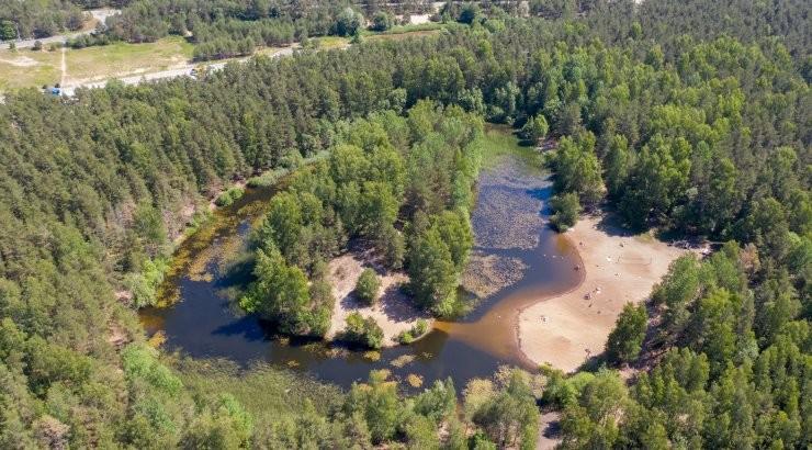 Таллинн намерен взять под локальную защиту часть леса Харку
