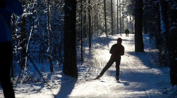 В Пыхья-Таллинне готова лыжная трасса