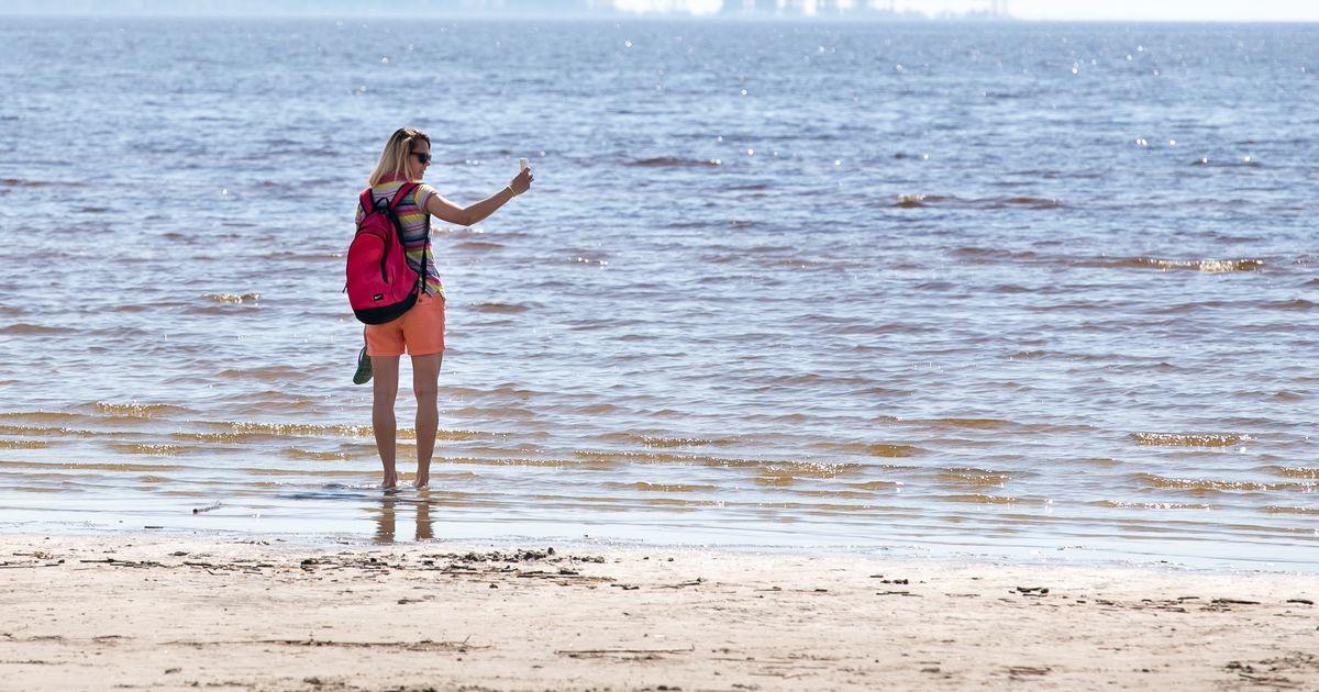 Опасно для здоровья: на пляжах в четырех уездах обнаружены вибриобактерии