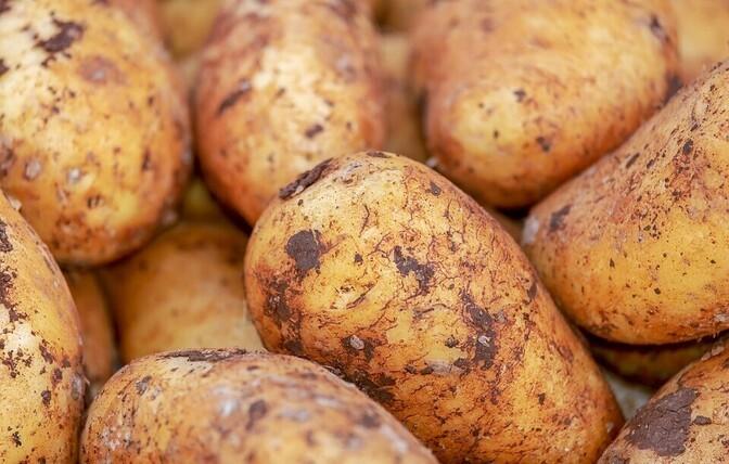 Йозинг о подорожавшем в два раза картофеле: жители не будут отказываться от его покупки