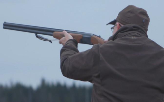 Фермеры просят разрешить весеннюю отпугивающую охоту на гусей, орнитологи против
