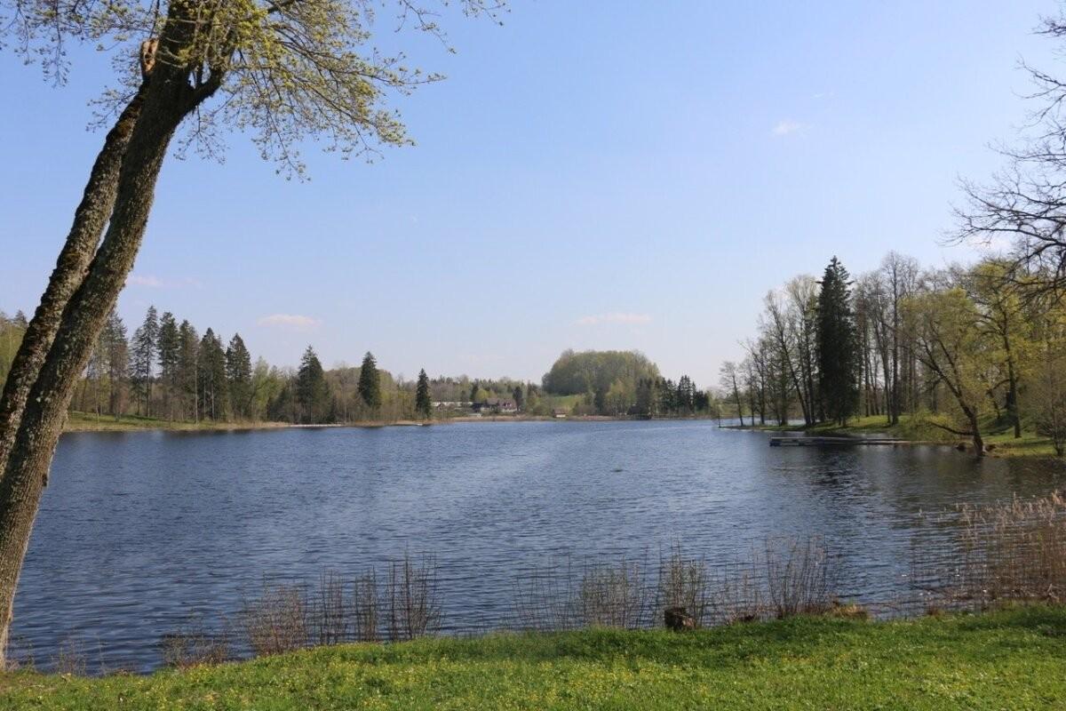 Рано утром маленький ребенок тайком пошел гулять и свалился в озеро. Его спас работавший неподалеку Николай