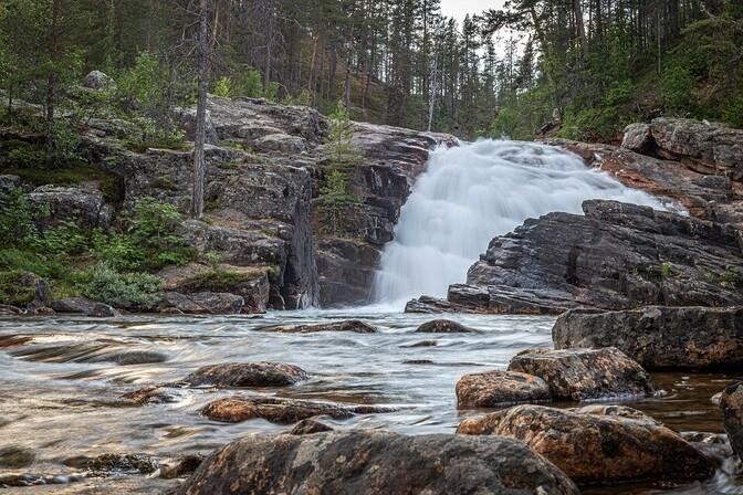 В Финляндии в связи с рекордным нагреванием воды опасаются массовой гибели рыбы