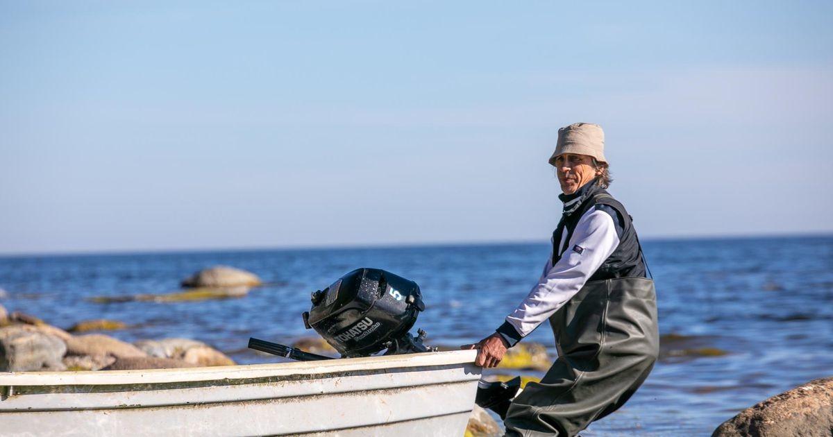 Рыбаки на мели: салака есть, а ловить нельзя