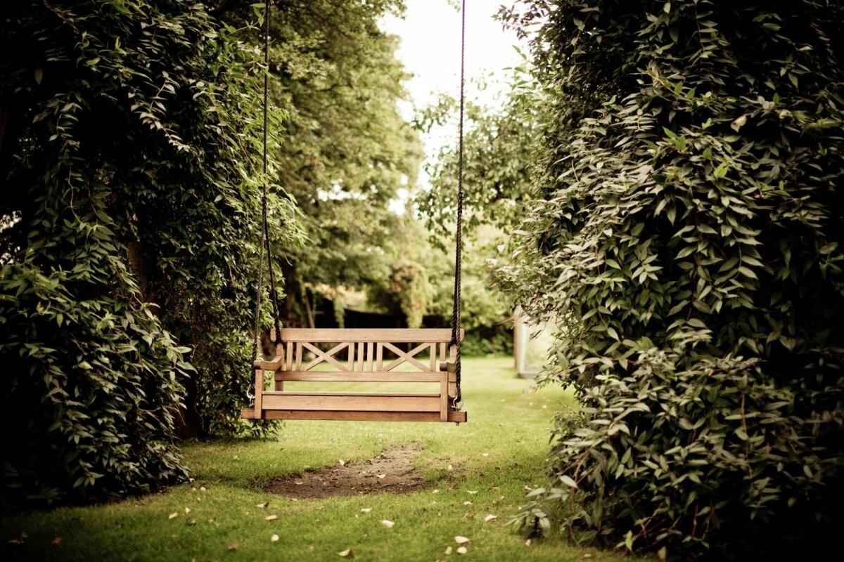 Ромашки вместо врачей? Что такое терапевтические сады и почему они улучшают наше самочувствие