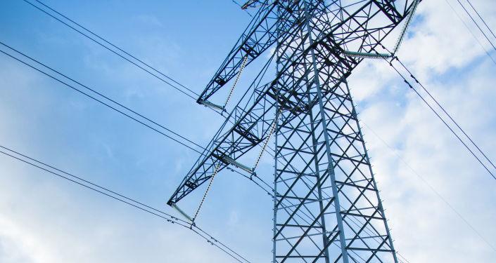 """Из-за """"капризов"""" Литвы Эстония ищет способ восполнить нехватку российского тока"""
