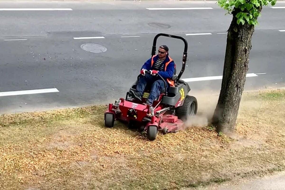 ВИДЕО │ Таллинн стрижет газоны, на которых не растет трава. Для чего?