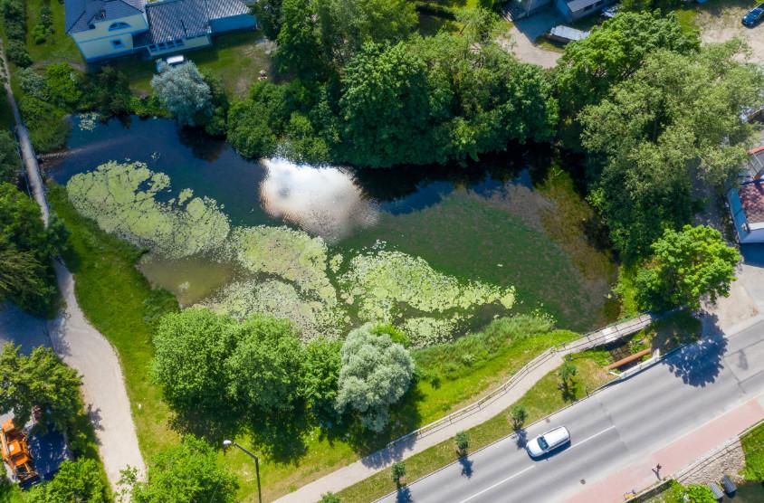 На ручье Сооликаоя появятся первые в Эстонии плавучие острова, очищающие от загрязнения