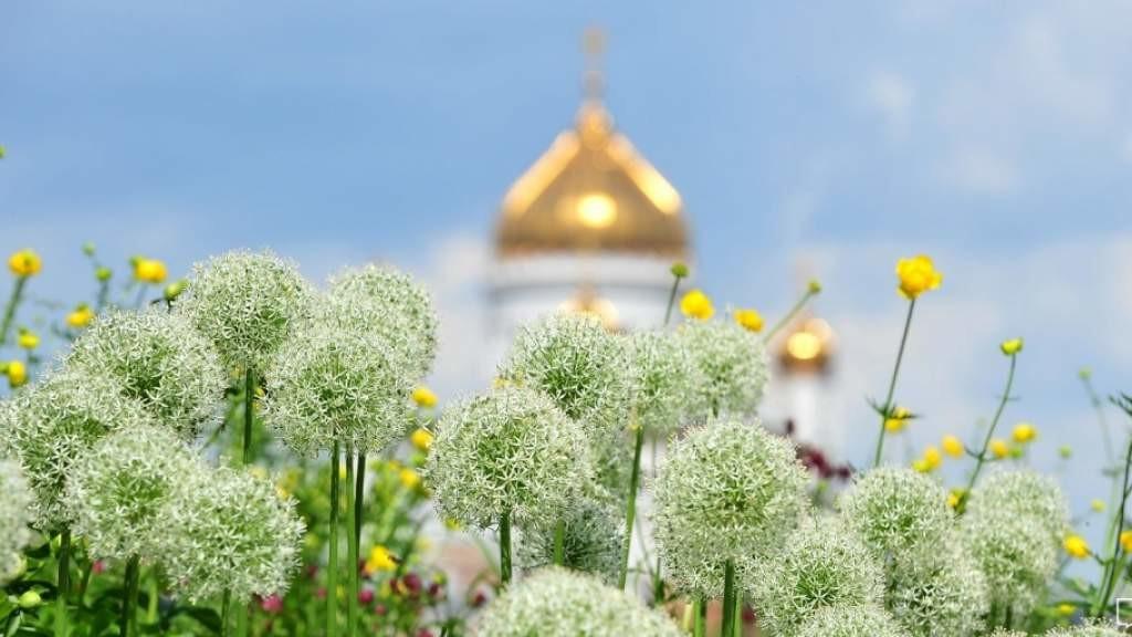 Православные верующие встречают День Святой Троицы
