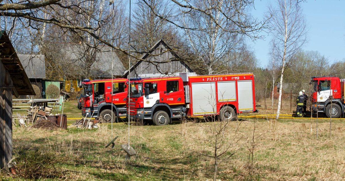 Учения привели к лесному пожару? Спасатели тушат огонь на центральном полигоне