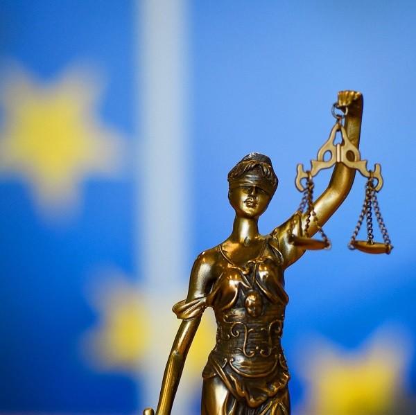 Защищать нацменьшинства Европы продолжат в суде