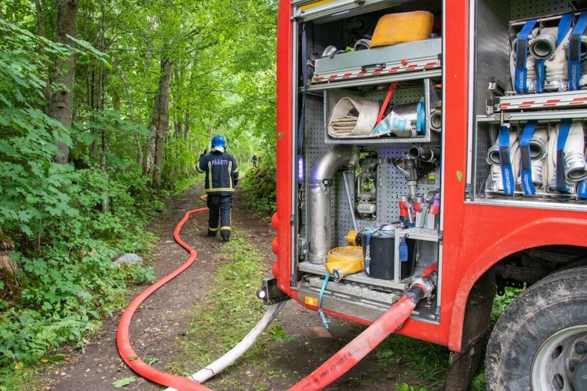 Спасательный департамент объявил об установлении пожароопасного периода