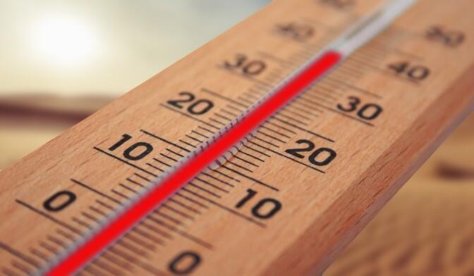 С приходом жары Ирускому дому попечения закупили дополнительные вентиляторы