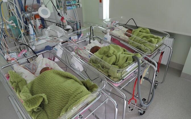 В Ида-Таллиннской центральной больнице родились первые в этом году тройняшки