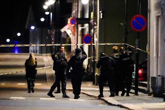 В норвежском Конгсберге застрелили пять человек из лука и стрел