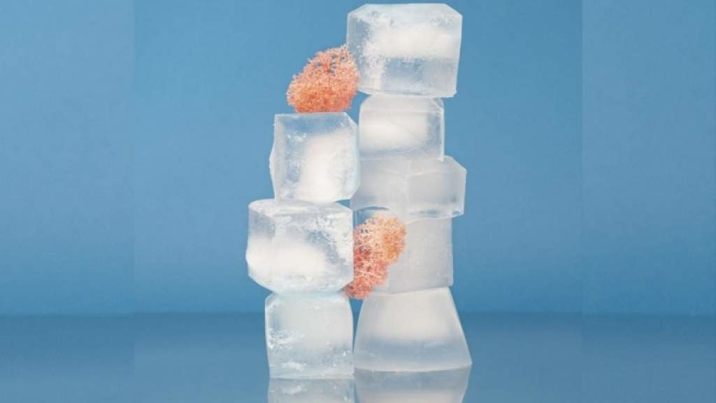 Как работают кубики льда для лица, кому нельзя использовать кубики льда для лица?