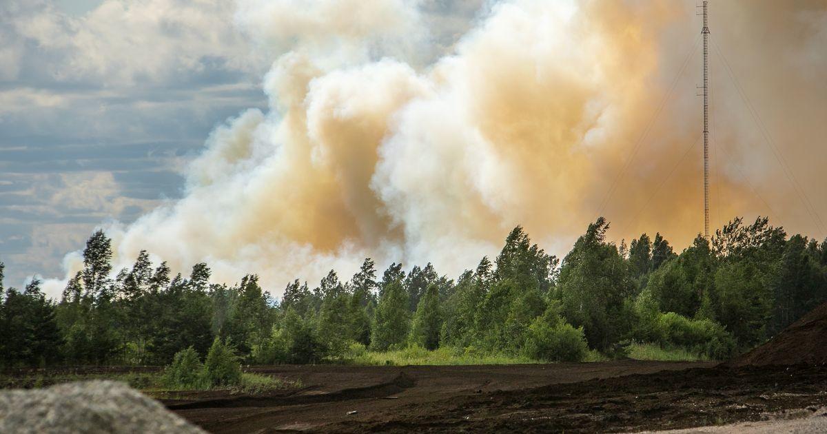 Спасатели тушат пожар на торфянике Лавассааре в респираторах