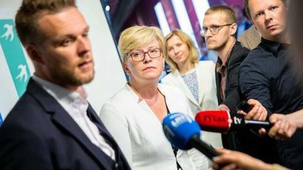 Порядок подачи прощения об убежище в диппредставительстве Литвы готовится– глава МИД