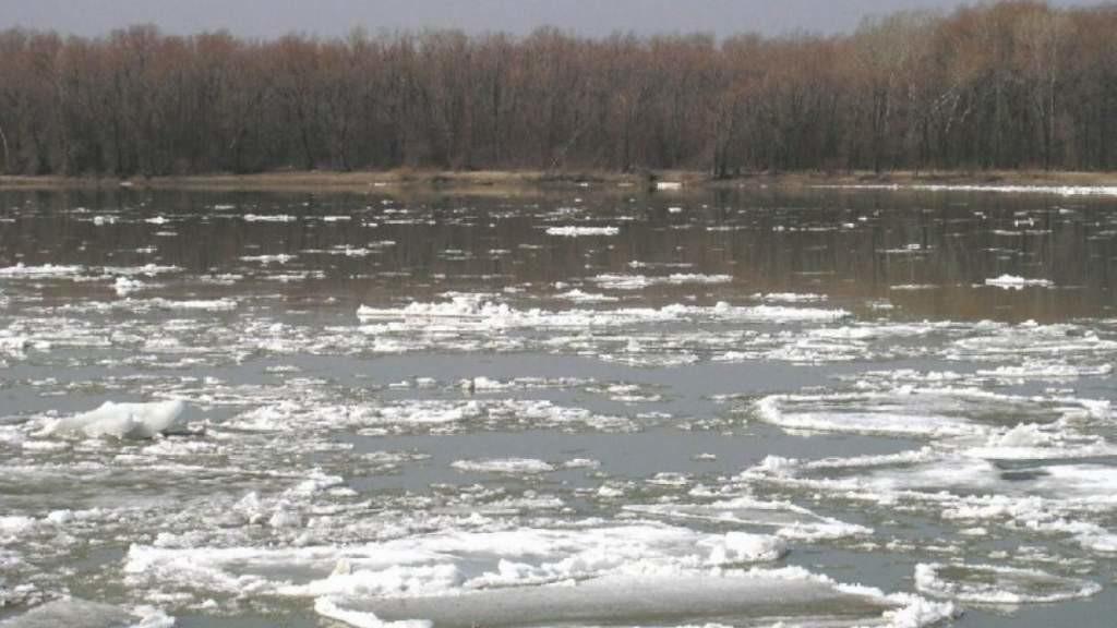 Пик паводка на реках Курземе может наступить уже на этой неделе