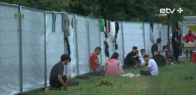 В Германию прибывают все больше мигрантов из Беларуси