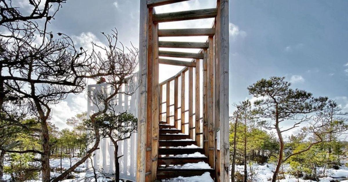 Посетите самые красивые инстаграмные места  Эстонии этой весной