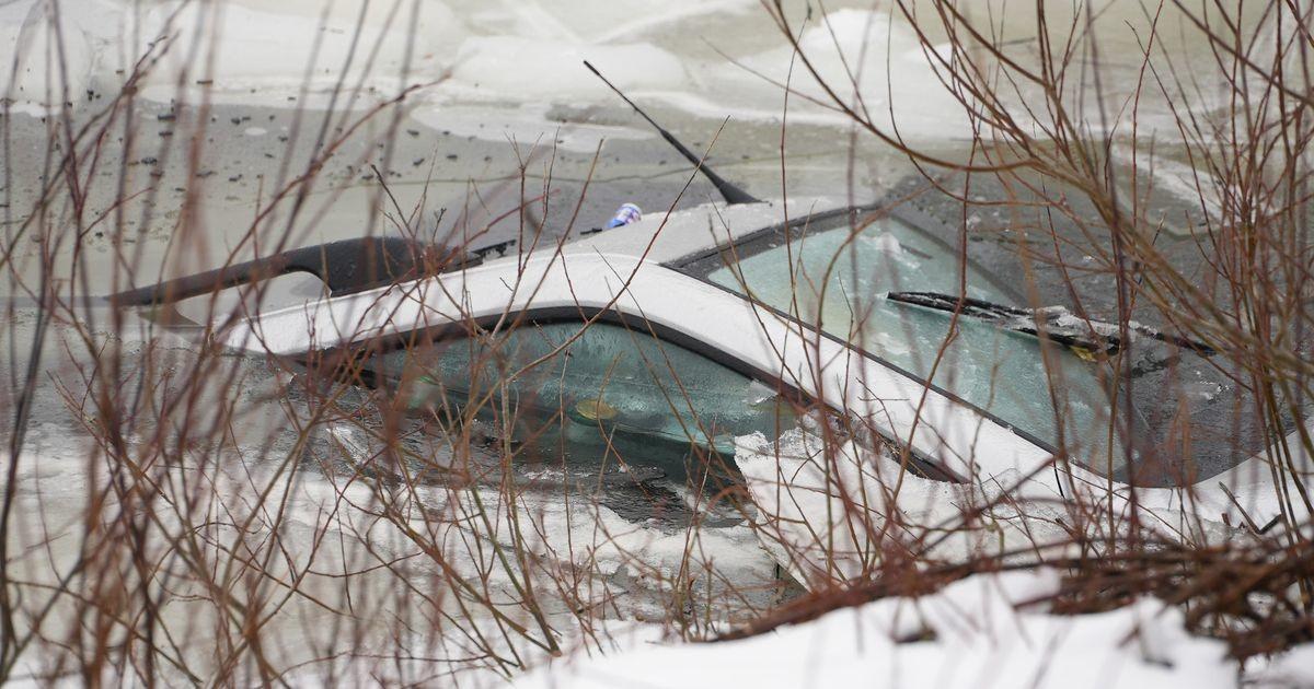 Автомобиль провалился в пруд: погиб мужчина и две собаки