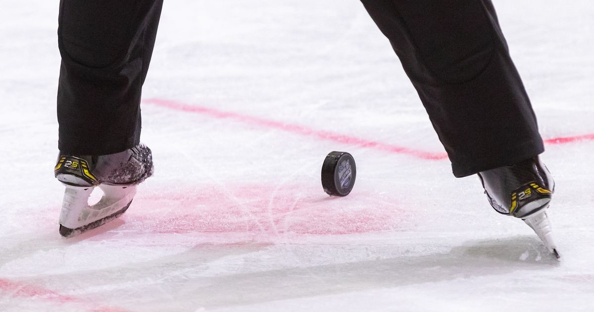 Хоккейная лига Coolbet: HC Vipers - HC Panter