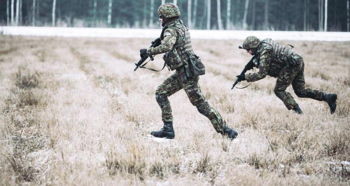 На 17-й год пребывания Эстонии в НАТО в ее боеспособности засомневались
