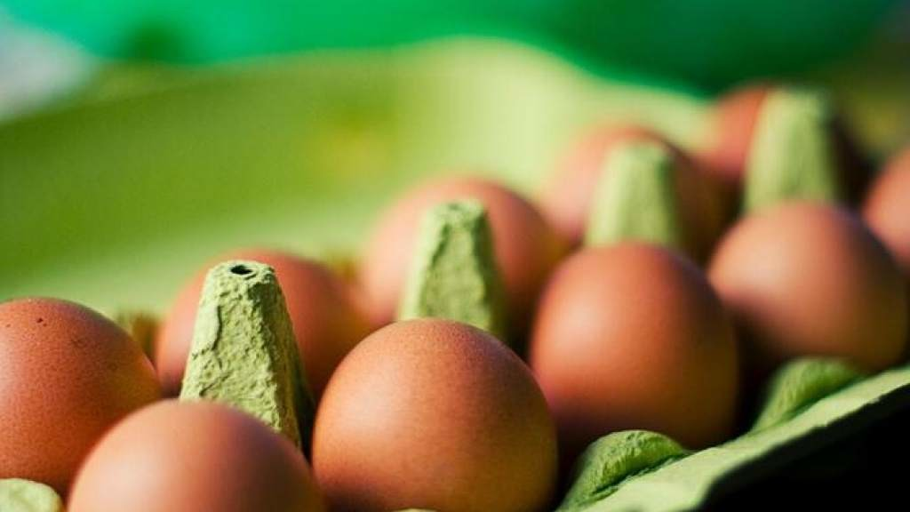Жители Эстонии съедают в два раза больше куриных яиц, чем производится в стране
