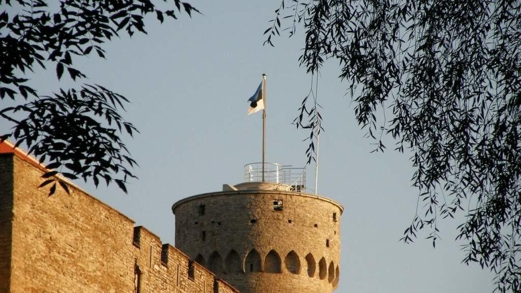 Российские дипломаты раскритиковали решение суда в Эстонии, оставившего под стражей Сергея Середенко