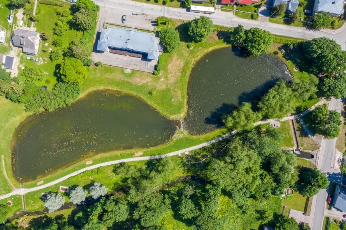 В Раквере появятся первые в Эстонии плавучие острова, очищающие от загрязнения