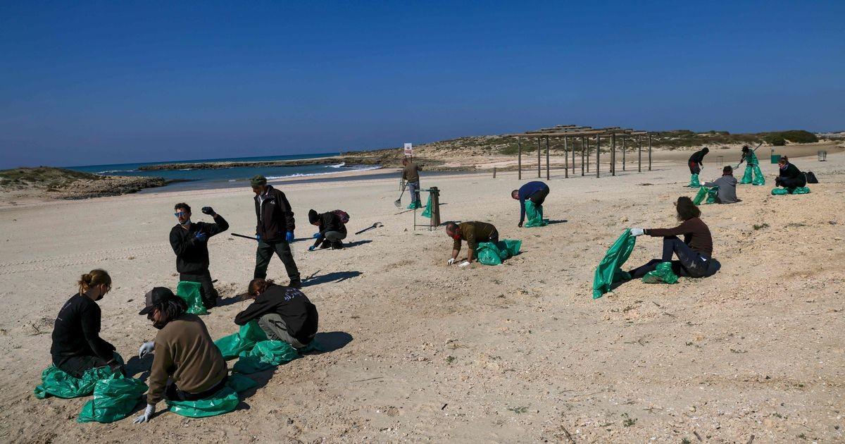 В Израиле произошла одна из самых серьезных экологических катастроф в истории страны