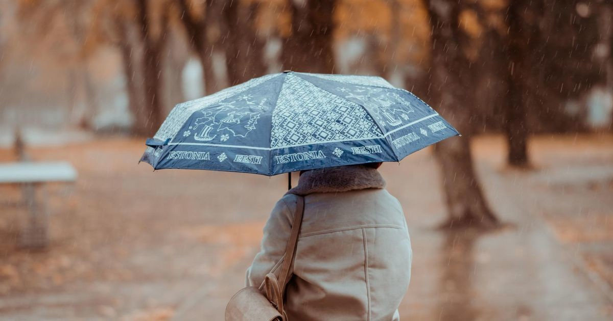 Синоптики: смене погоды будет предшествовать усиление ветра