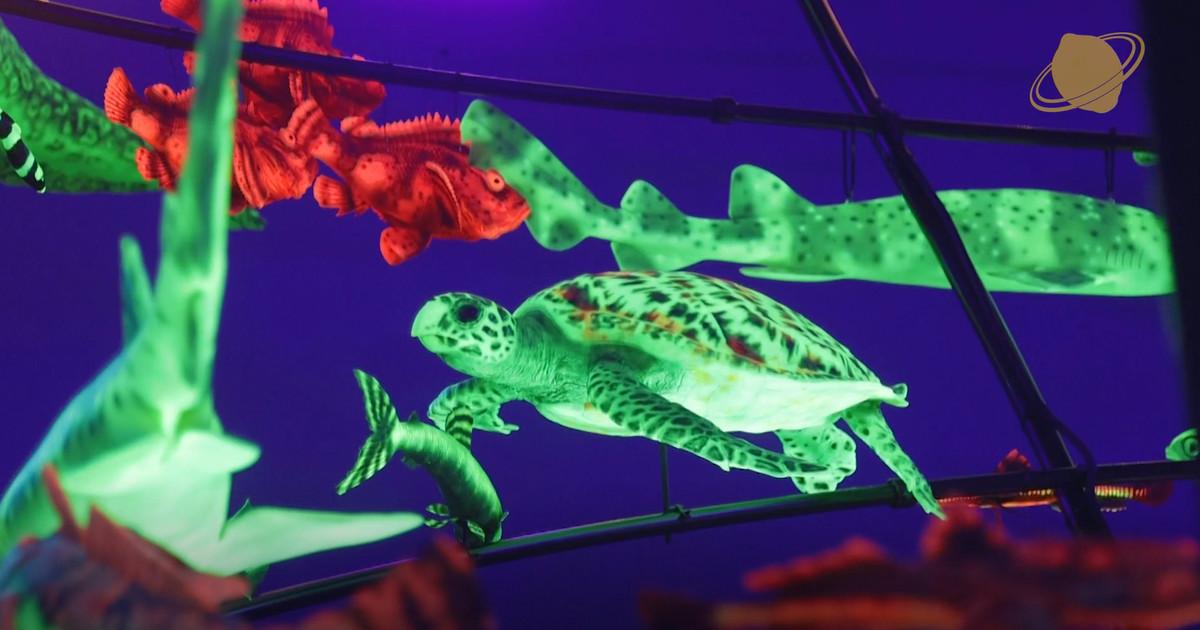 Знаменитый Американский музей естественной истории устраивает в Таллинне фантастическую выставку о тайнах глубин океана!